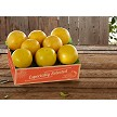Premium Ruby Red Grapefruit 1 Tray